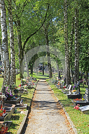 Cemetery in town Ruzomberok, Slovakia Editorial Stock Image