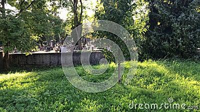 Cemitério da antiga cidade, atrás do muro de pedra Cemitério durante o dia Feixes de sol brilham pelas árvores ao fundo video estoque
