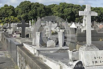 Cemiterio do Caju