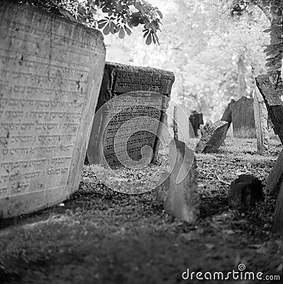 Cemitério judaico velho