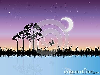 Cena estrelado da noite no vetor do pântano