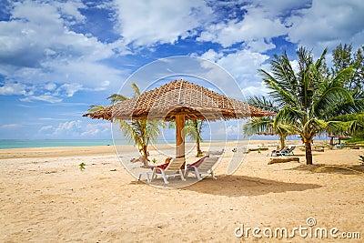 Cenário tropical da praia