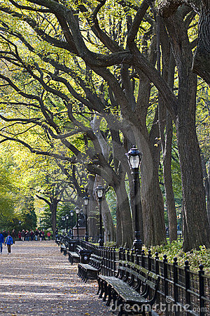 Free Central Park Stock Image - 10545231