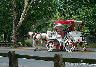 central park carriage ride new york usa royalty free stock photo image 6380805. Black Bedroom Furniture Sets. Home Design Ideas