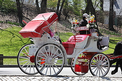 Central Park Horse carriage, New York