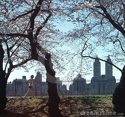 Central Park Jogger New York City USA