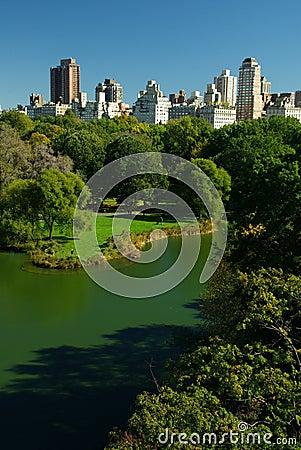 Free Central Park Lake Royalty Free Stock Photo - 11546945