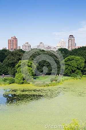 Central park Editorial Photography