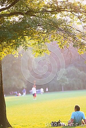 Free Central Park Nyc Stock Photos - 1161223