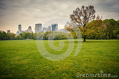 Central park at rainy day