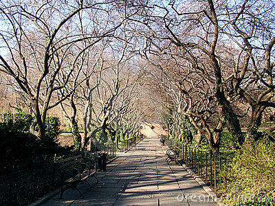 central park scenery 2