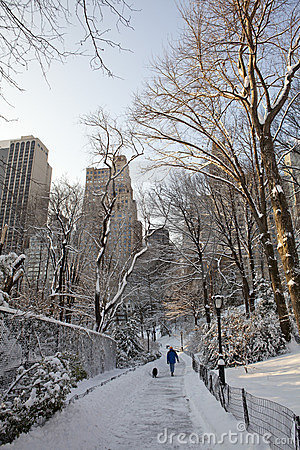 Central Park at winter