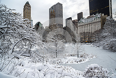 Central Park, New York City winter