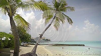 Centro turístico exótico, gente feliz disfrutando de día de fiesta en playa tropical del mar con las palmeras y las casas almacen de metraje de vídeo