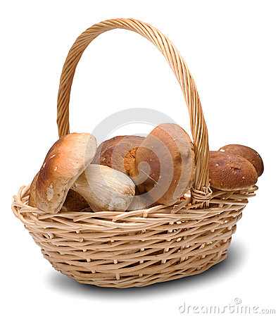 Ceps in basket