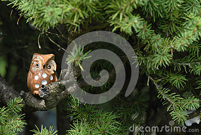 Ceramic owl on the branch of a fir tree