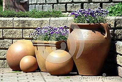 Ceramics pot with pansy viola plants