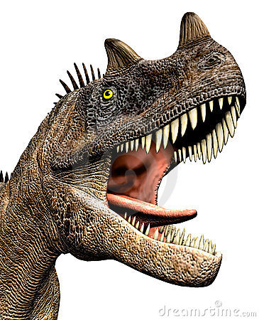Free Ceratosaurus Dinosaur Closeup Headshot Stock Photography - 21065292