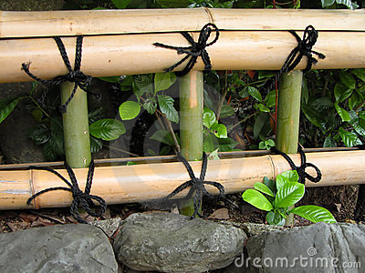 Cerca de bambú japonesa