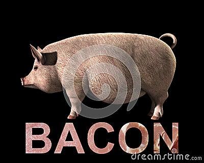 Cerdo y tocino