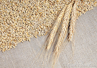 Cereals on burlap background