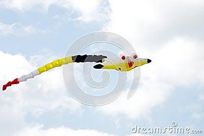 Cerf-volant et ciel colorés
