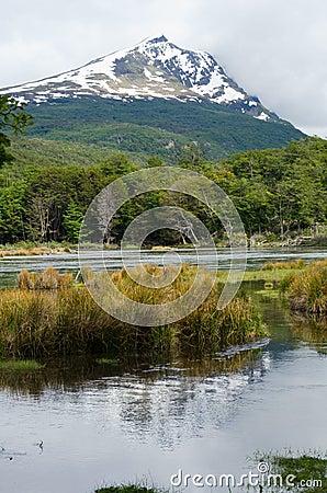 Free Cerro Condor In Tierra Del Fuego National Park Royalty Free Stock Images - 37000449