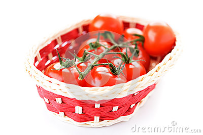 Cesta con los tomates maduros