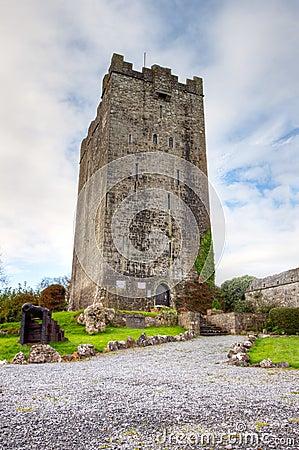Château de Dysert o Dea, Cie. Clare - Irlande.