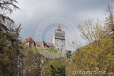 Château de son, borne limite de la Roumanie