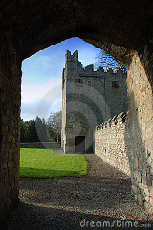 Château de XVIIème siècle/abbaye de Monkstown