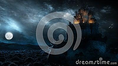 Château pendant la nuit