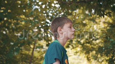 Chłopiec stojaki w spojrzenia zamyśleniu przy liśćmi i parku Zadumany nastr?j ?adni strza?y zbiory wideo