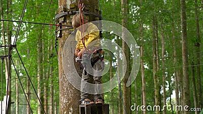 Chłopiec w zbawczej nicielnicie dostaje gotowy jechać zipline w treetops w lasowym przygoda parku Wspina się na wysokości zbiory