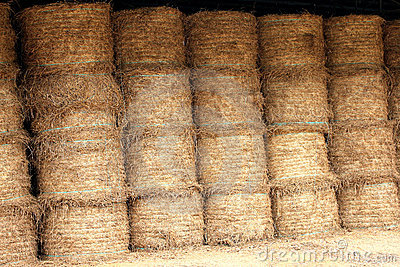 Chaff store food for horse and cow