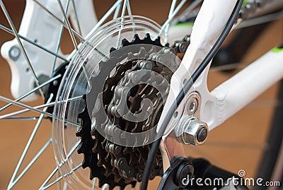 Chain drive bike