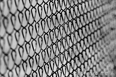 Chain link fence background