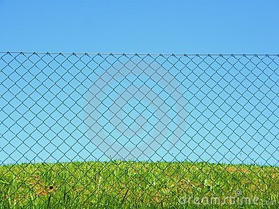 Chain link fence grass sky
