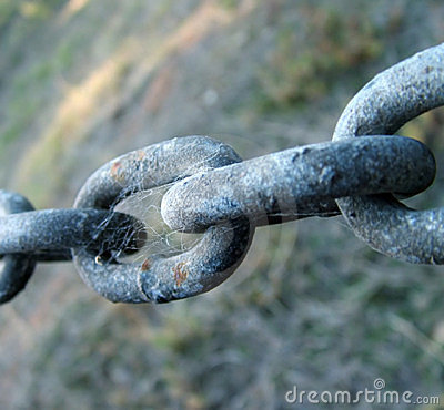 Chain links