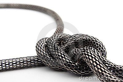 Chain the snake