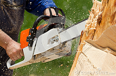 Chainsaw blade