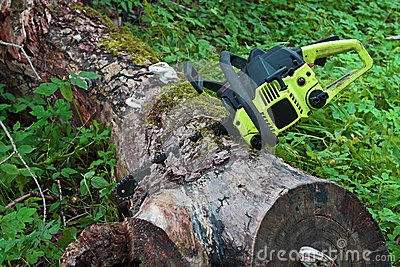 Chainsaw in log