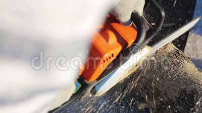 Chainsaw Man cutting firewood stock video footage