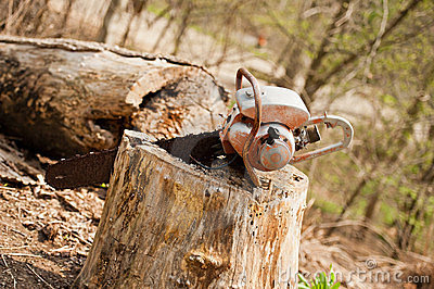 Chainsaw in Tree Stump