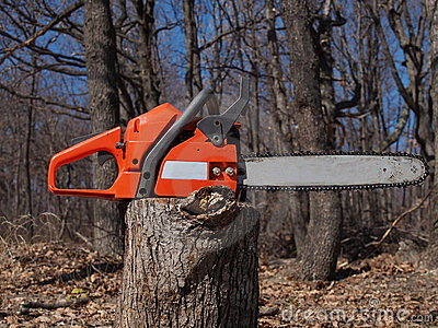 Chainsaw and woods