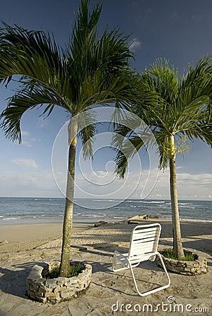 Chair by the beach tropical