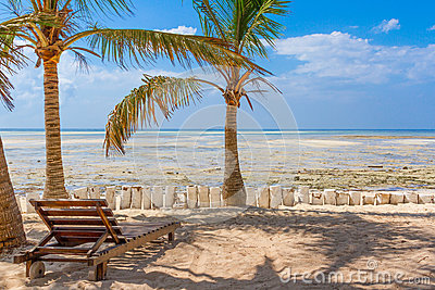 Chair and green trees on a white sand beach. Watamu, Kenya