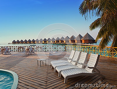 Chaise lounges on a beach stand at the pool