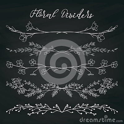 Free Chalk Drawing Dividers With Branches, Plants And Flowers Royalty Free Stock Images - 95895719
