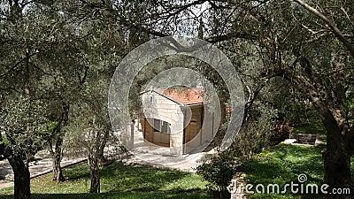 Chambre dans un verger olive Chambre avec le toit carrelé banque de vidéos